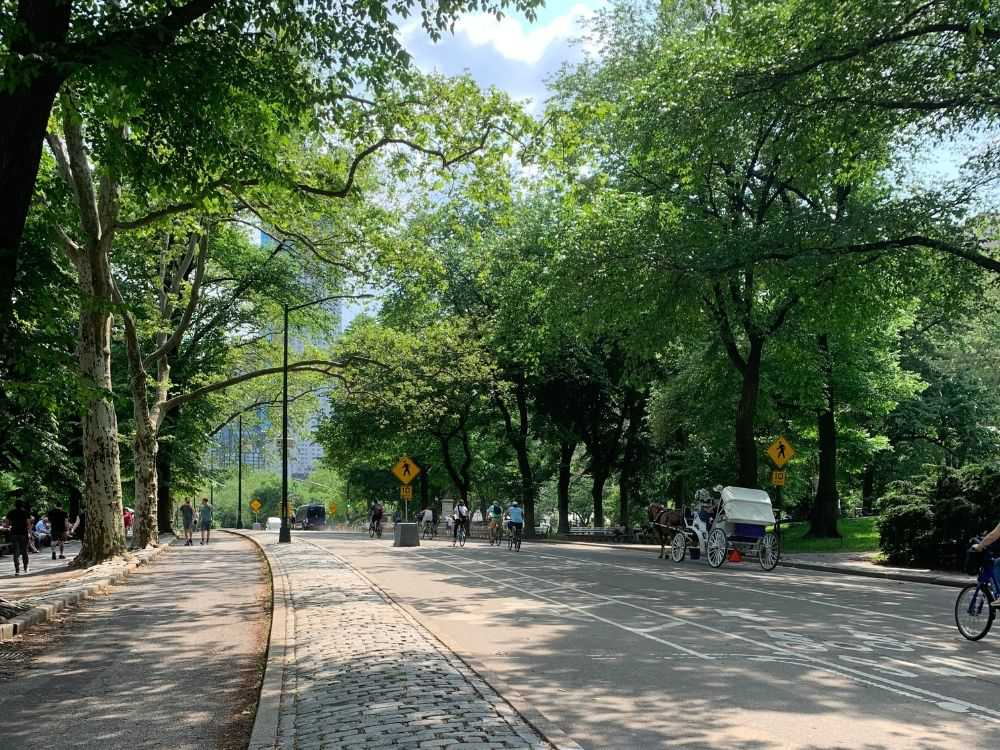 Avengers filming locations: Central Park